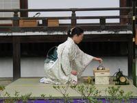 Tea_ceremony_performing_2